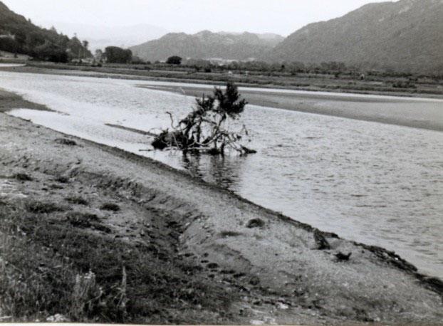1975-VK-44