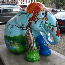 elephantadam