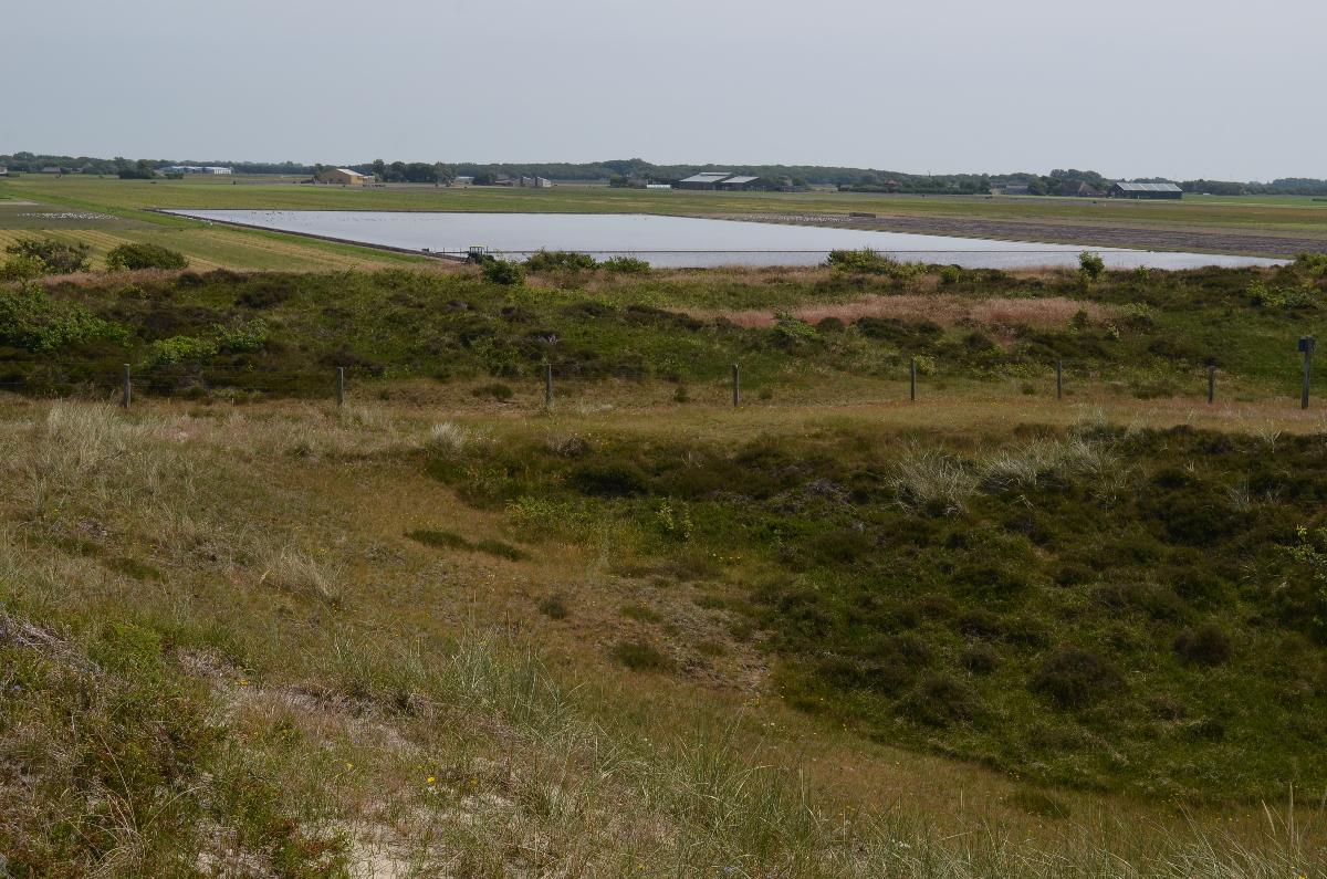 CallantsoogZwanenwater259