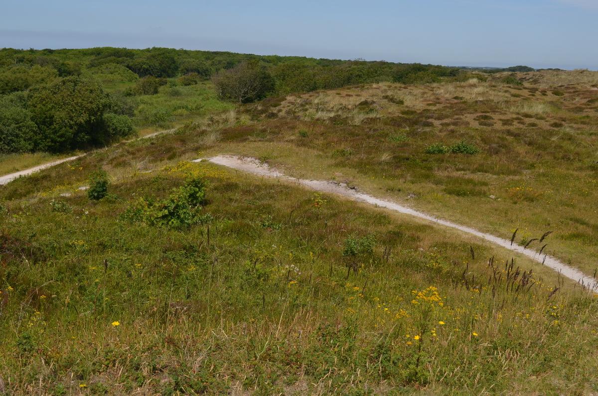 CallantsoogZwanenwater261